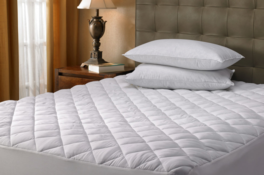 Does Vacuuming Your Mattress Get Rid Of Bed Bugs