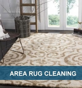 Keep The Rugs In Your Home Fresh And Clean With Our Rug Cleaning Service.  We Know How To Gently And Efficiently Clean Rugs Of All Kinds.