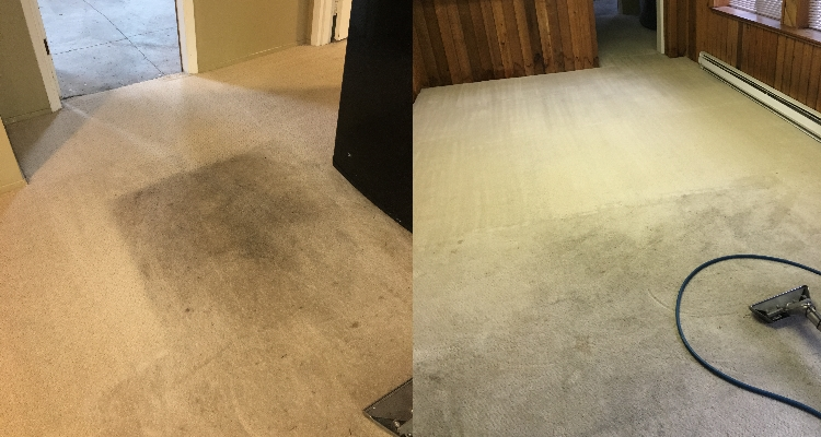 Dingy Dirty Carpets